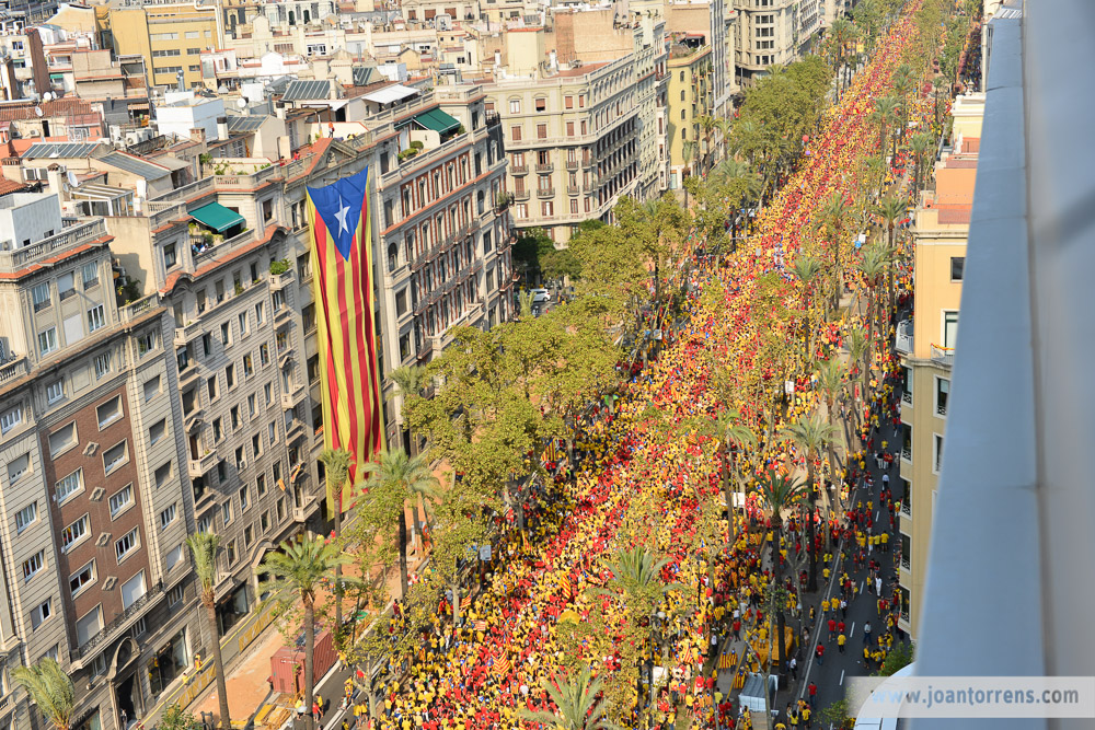 JoanTorrens.com-araeslhora-All_rights_reserved-0005
