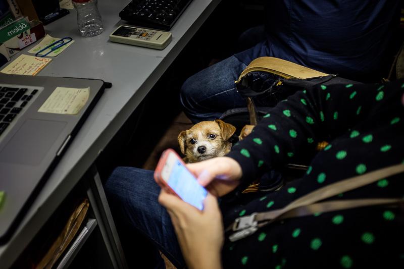 Natalia mirando el móvil junto a Ewok/Crispeta, la mascota del